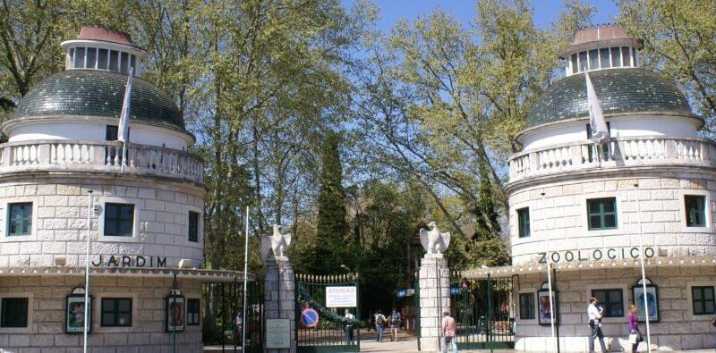 Jardim Zoológico: há lugares que nunca se esquecem