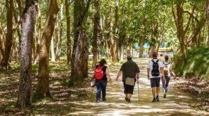 Percursos Pedestres na Tapada de Mafra