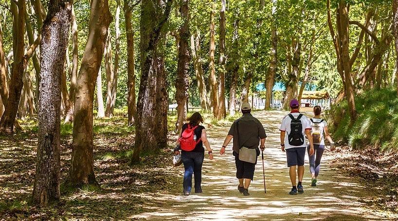 Sítios a visitar com crianças e toda a família: Percursos Pedestres na Tapada de Mafra