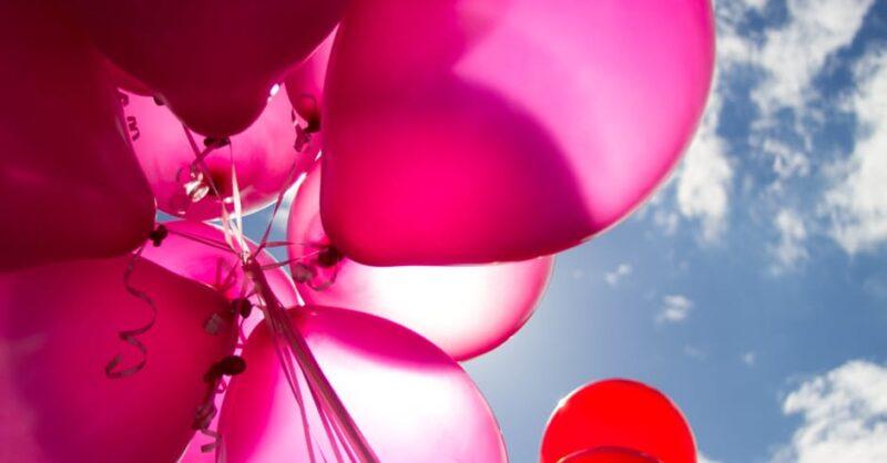 Guia Festas de Aniversário - Animação