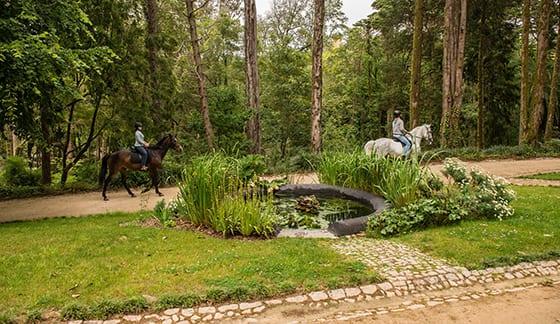 Andar a cavalo no Parque do Pena: uma experiência única!