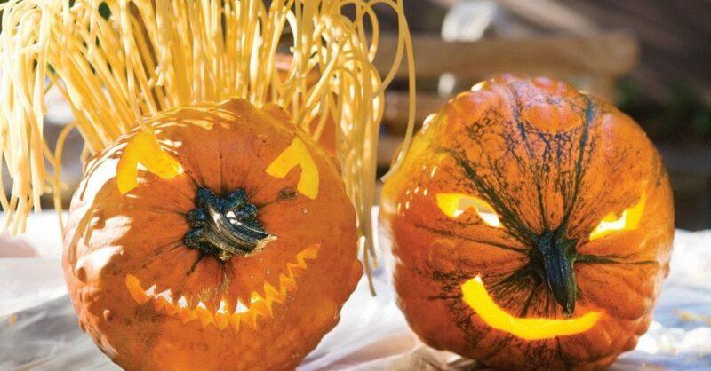 Como fazer uma Abóbora Cabeluda para o Halloween