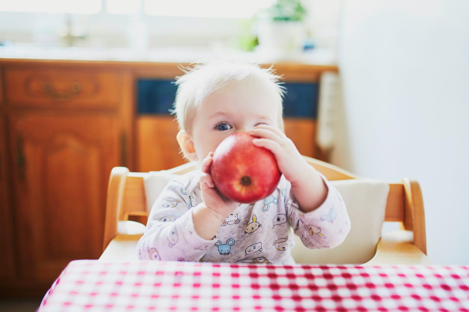 Alimentação de um bebé de 7 meses