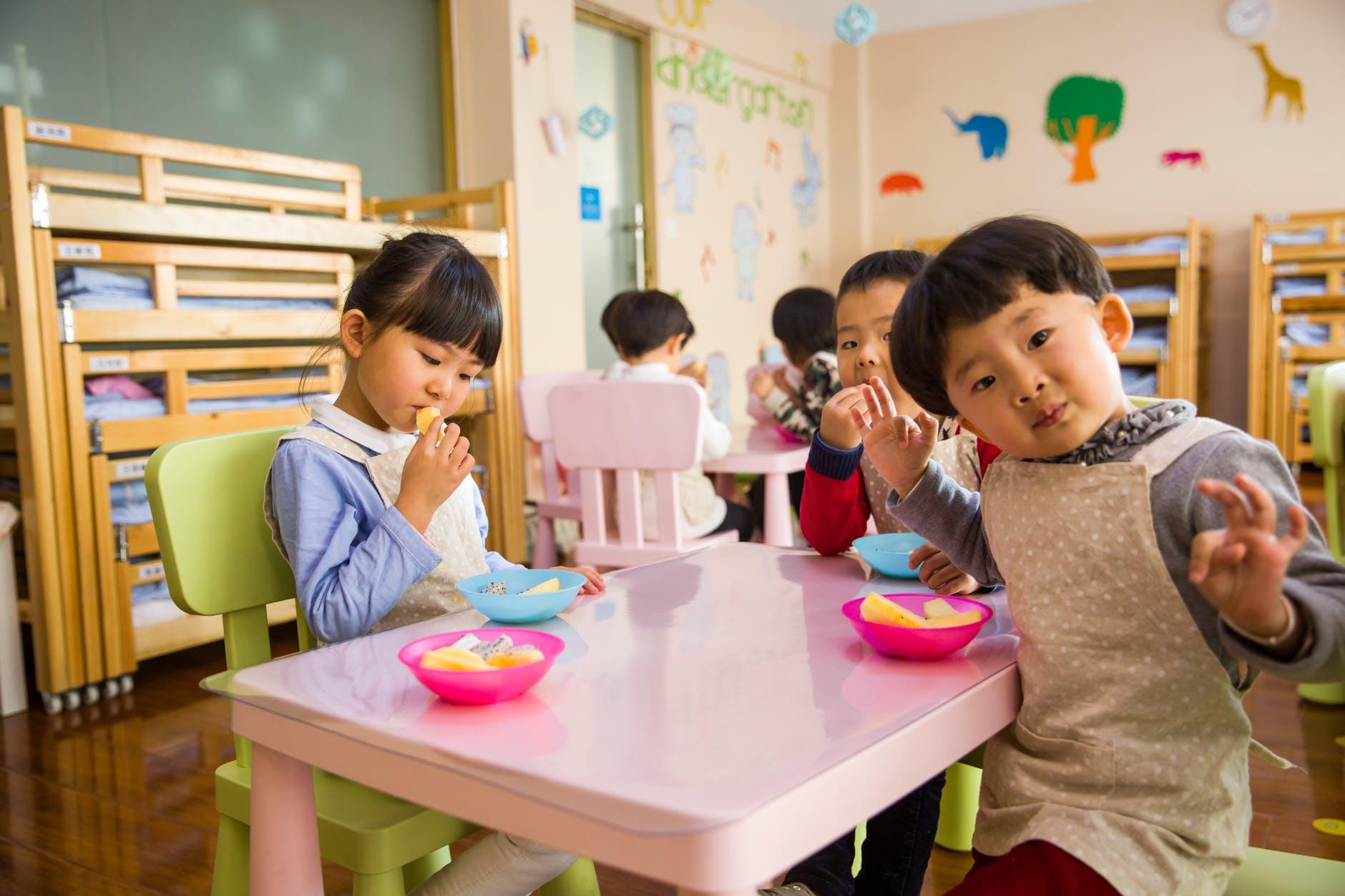 alimentação escola