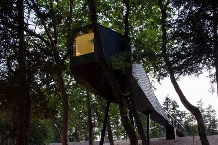casa arvore pedras salgadas parque