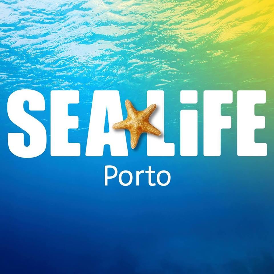 Pumpkin Awards 2016 - As Melhores Atividades de Fim-de-Semana Porto: sea life