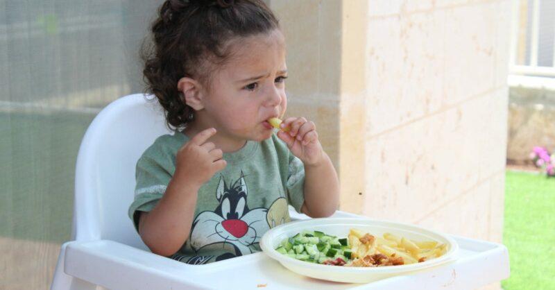 alimentação de um bebé de 10 meses