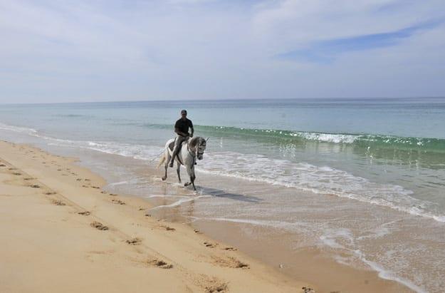 Cavalos na Areia