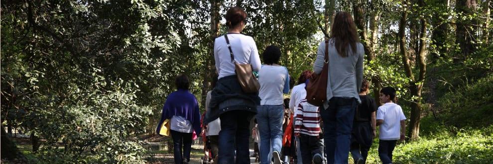 Famílias em Serralves