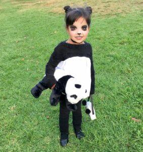 panda-carnaval