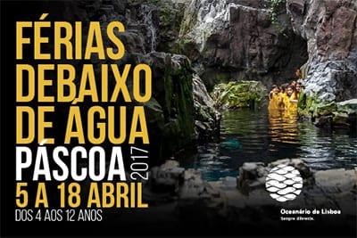 Férias debaixo de água Páscoa 2017 Oceanário de Lisboa