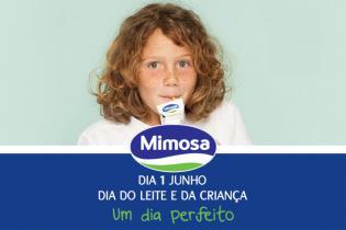 3 ideias super Dia Crianca, apoio Mimosa