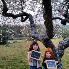 8º dia Viagem Familia Pumpkin - Foz Côa à Reserva Faia Brava