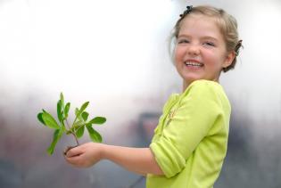 8 fantásticas dicas ambientais toda família