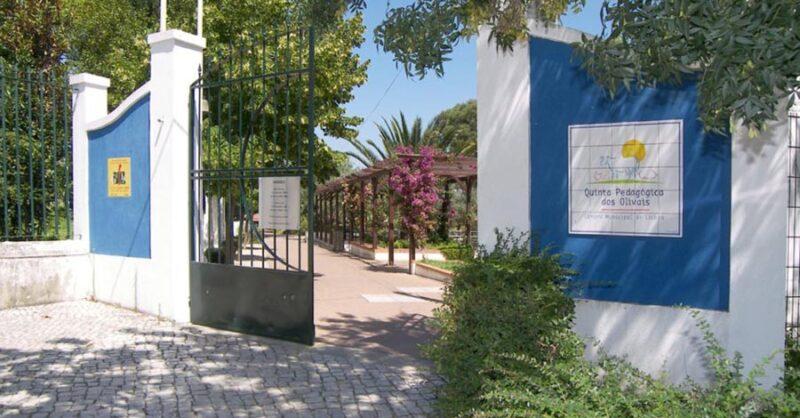 Quinta Pedagógica dos Olivais em Lisboa: os animais na cidade