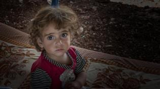 Quero ajudar uma crianca síria agora?