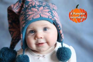 As escolhas Pumpkin famílias pequenas abobrinhas