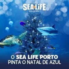 Ateliers Natal SEA LIFE Porto