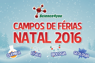Campos Férias Natal Science4you