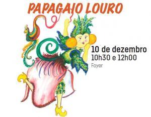 Concerto Papagaio Louro