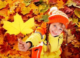 Cor das Folhas de Outono