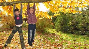 Ideias giras fazer família fim semana