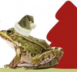 Natal Mágico Tapada Nacional Mafra