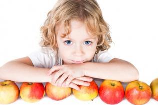 Opcões saudáveis lanches escolares
