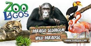 Parque Zoológico Lagos Programa 2016/2017