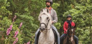 Passeios cavalo pónei Parques de Sintra