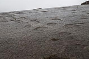 Pegadas Dinossáurios