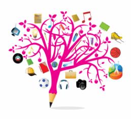 Programa Treino Competências Funcionais Alunos Necessidades Educativas Especiais