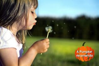 Pumpkin recomenda esta semana 28 Maio 2012
