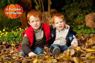Pumpkin recomenda esta semana 3 Nov