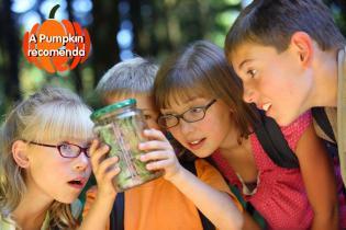 Pumpkin recomenda fim-de-semana 24 Fev 2012