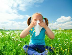 Sofre alergias? Aprenda preveni-las