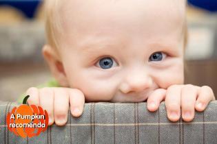 Sugestões amorosas bebés mamãs