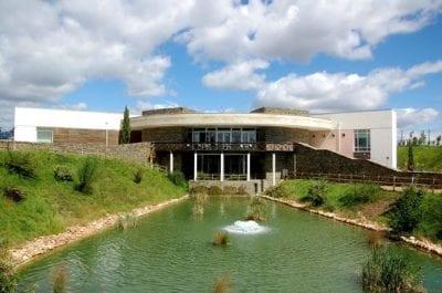 Centro de Ciência Viva de Proença-a-Nova: A Floresta