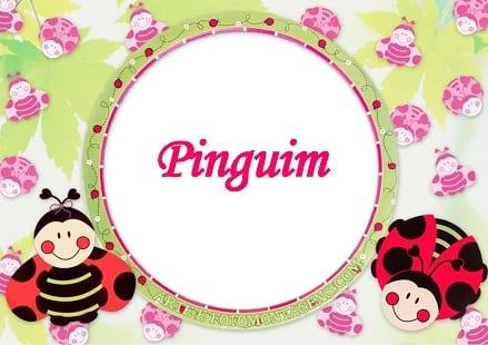 Pinguim – Histórias (en)cantadas