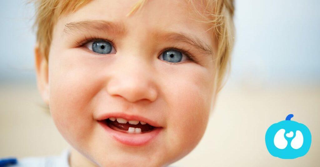 Atividades para Bebés no fim de semana de 20 e 21 e até 26 de Maio