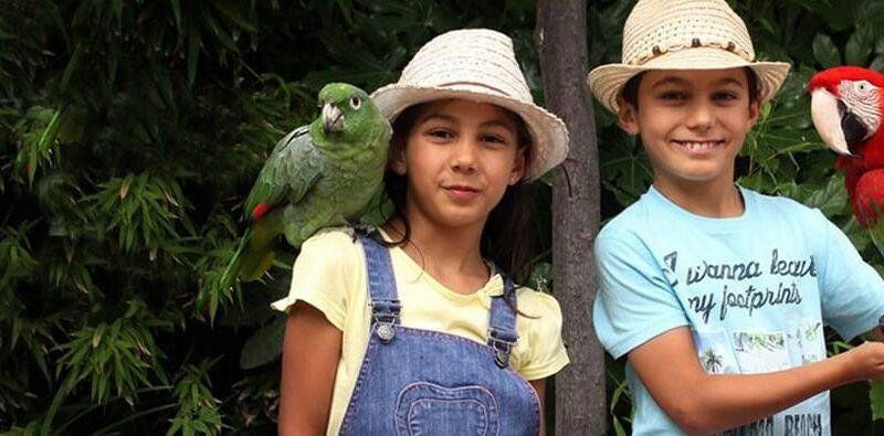 Ateliers de Férias de Verão do Jardim Zoológico
