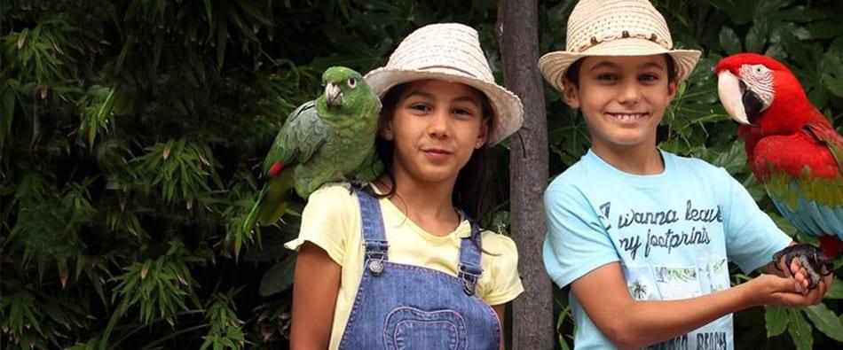 Férias de Verão do Jardim Zoológico