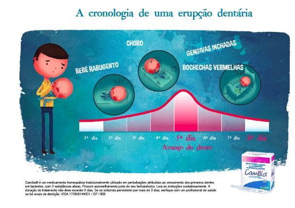 cronologia erupção dentária