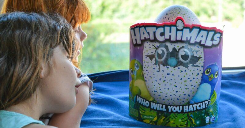 As melhores dicas para aproveitar do seu Hatchimal!