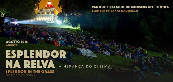 Cinema Ao Ar Livre Esplendor na Relva