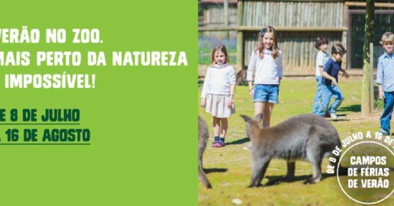 No Zoo Santo Inácio o verão é, no mínimo, selvagem!