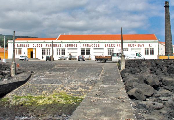 museu-indústria-baleeira