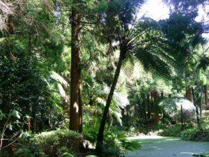 parque-florestal-sete-fontes