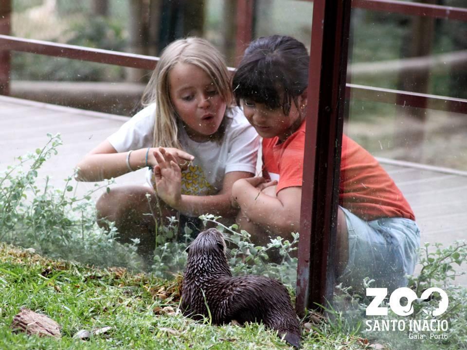 Serviço Educativo - Visita Escolar ao Zoo Santo Inácio