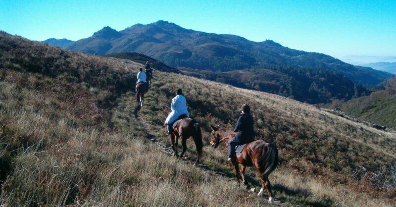 EquiCampo, turismo de montanha e experiências únicas para a vossa família